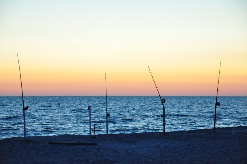 Free Picture: Photo of fishing poles stuck in the sand on a Captiva Island beach with the relaxing colors of the sunset in the background.