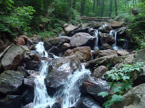 Free Picture: Photo of a small waterfall midway up the trail to Amicalola Falls in Georgia.