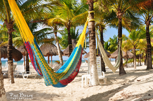 Free Picture: Photo of a colorful Mayan hammock hanging on the beach from some tropical palm trees on the island of Cozumel, Mexico.