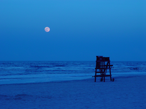 Free Picture: Photo of a moonrise the night before a full moon in Daytona Beach, FL.