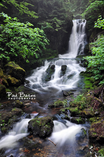 Photo of Dickson Falls Fundy National Park New Brunswick