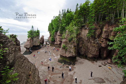 Photo of Hopewell Rocks Flower Pots New Brunswick Canada