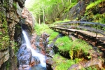 Photo of Beautiful Natural Waterfall Scenery NH