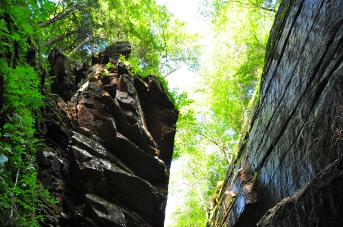 Free Picture: Photo of the area where Flume Boulder was suspended across Flume Gorge back in the 1800's.