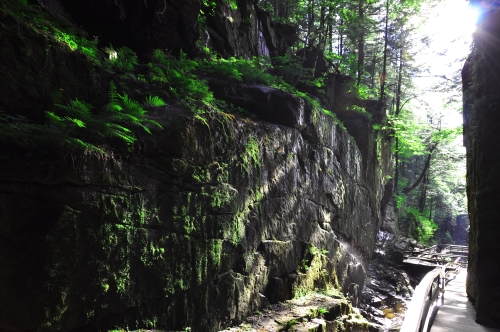 Free Picture: Photo of a dreamlike shadowy chasm at Flume Gorge, NH.