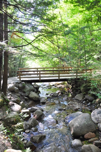 Free Picture: Photo of a footbridge crossing over rocks in a stream as water flows downstream.
