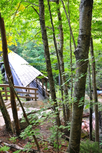Free Picture: Photo of an old covered bridge structure in the forest that crosses a stream in New Hampshire.