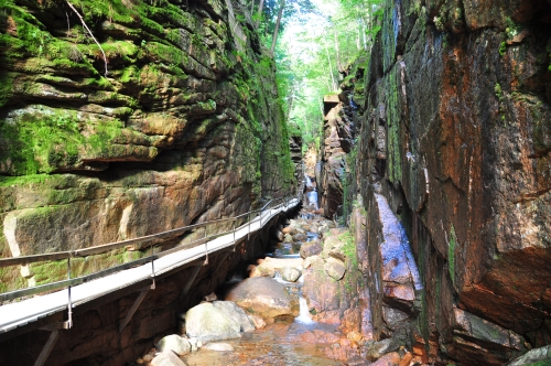 Photo of Suspended Wooden Path Over Stream Franconia Notch NH