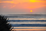 Free Photo of Wilbur by the Sea Palm Sunrise Florida