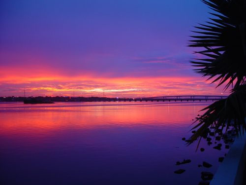 Free Picture: Photo of a beautiful sunset over the Halifax River with a blue, orange, red, and purple sky in Daytona Beach, FL among the palm trees.
