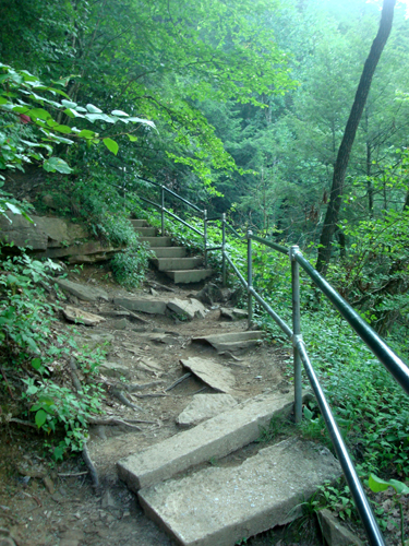Free Picture: Photo of broken steps on one of the main trails at Fall Creek Falls, Tennessee.
