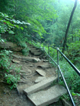 Photo of Broken Steps Fall Creek Falls Tennessee