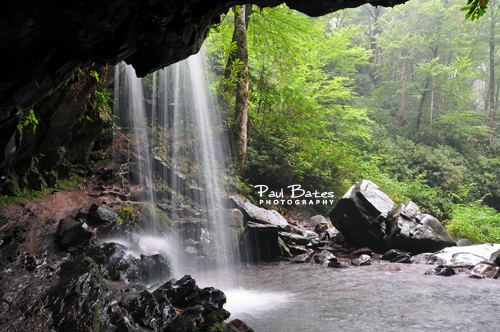 Free Picture: Photo of Grotto Falls, TN that's a popular waterfall in Great Smoky Mountain National Park and as the name implies, it's a grotto where you can walk behind the waterfall.