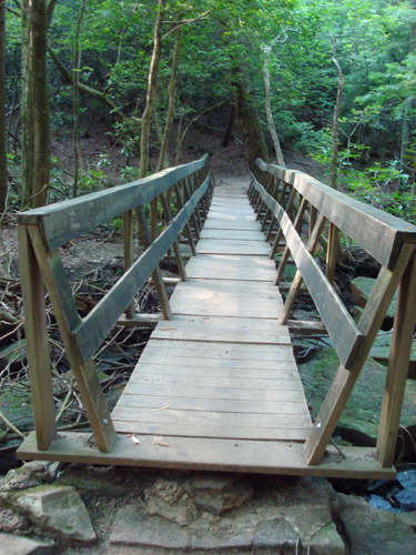 Free Picture: Photo of an old wooden rickety bridge built on rocks in Fall Creek Falls, TN.