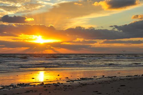 Florida Beach Scenic Sunrise